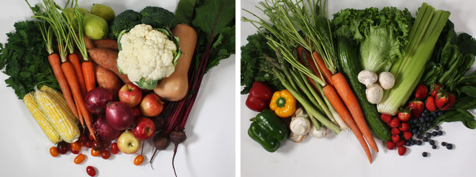 Examples of Box variation in fresh produce across the summer and fall seasons
